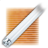 Fluorescent Linear T12 20W Medium Bipin Grow