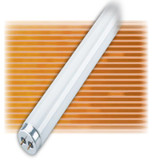 Fluorescent Linear T12  40W Medium Bipin 5000K