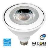 Euri Lighting EP38-2000ew Directional (Wide Spot) LED Light Bulb 17W 120V 3000K