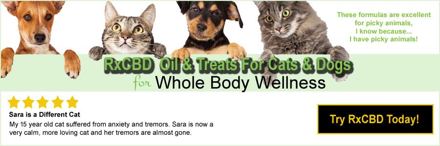 RxCBD | CBD Oils & Treats for Dogs & Cats