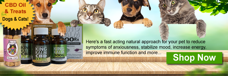 CBD for Dogs & Catsv