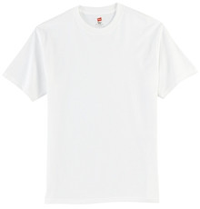 Hanes® - Tagless® 100% Cotton T-Shirt w/Spirit Screen Logo - Trinity