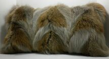 Real Genuine Coyote Sections dyed Fur Pillow  made in  USA authentic cushion