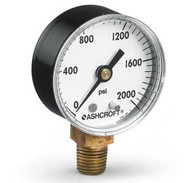 Stock manufacture photo disclaimer. This photo is for informational purposes only. It may or may not match the product you order depending on model code and build used.  For example, you may have ordered a brass process connection on your gauge, but the photo shows a stainless steel.  Please contact us with any questions you may have prior to ordering.