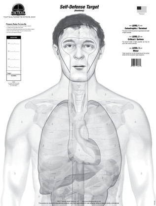 """The """"Anatomy"""" (Self-Defense Greyscale Target) design replaces the standard human silhouette target with an anatomically accurate design featuring true to size organs and vital areas of a smaller human male. This target is divided into three """"SCORING LEVELS"""" which consist of the following: LEVEL 1- Catastrophic/Terminal, LEVEL 2- Critical/Serious, and LEVEL 3- Minor.  Shots placed on this target give the shooter a realistic idea of what effects their shots would have on an actual human. See the over-lay on our Concepts & Design page for a detailed description of these major differences from traditional targets."""