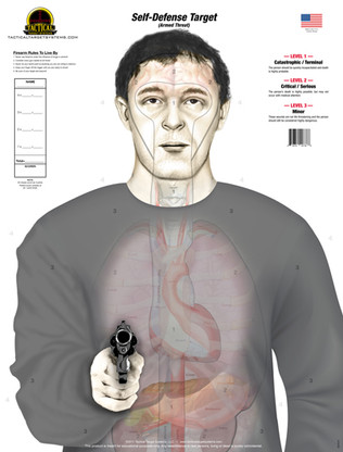 """The """"Armed Threat"""" (Self-Defense Target) design replaces the standard human silhouette target with an anatomically accurate torso holding a handgun. It features true to size organs and vital areas of a smaller human male. This target is divided into three """"SCORING LEVELS"""" which consist of the following: LEVEL 1- Catastrophic/Terminal, LEVEL 2- Critical/Serious, and LEVEL 3- Minor.  Shots placed on this target give the shooter a realistic idea of what effects their shots would have on an actual human.  The organs and vitals are faint at distance which creates a more realistic view of an adversary down range, because real bad guys don't come with bulls-eyes!"""