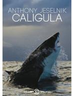 ANTHONY JESELNIK: CALIGULA (2PC) (WS) DVD