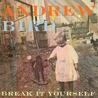 ANDREW BIRD - BREAK IT YOURSELF - / CD