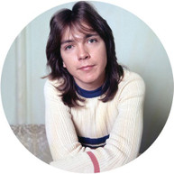 DAVID CASSIDY - I THINK I LOVE YOU - GREATEST HITS LIVE VINYL