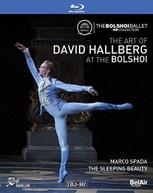 ART OF DAVID HALLBERG AT THE BOLSHOI BLURAY