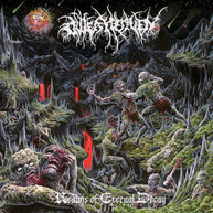 OUTER HEAVEN - REALMS OF ETERNAL DECAY VINYL