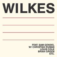 SAM WILKES - WILKES VINYL