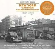 DOWN HOME BLUES: NEW YORK CINCINNATI & NORTH / VAR CD