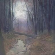 BENDIGO FLETCHER - TERMINALLY WILD / SLEEPING PAD VINYL