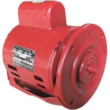 Xylem-Bell & Gossett 169035 1/4 HP 115V/60 1Phase 1725RPM