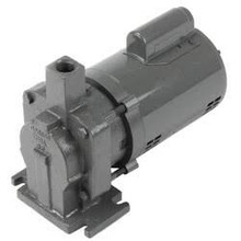 Xylem-Hoffman Specialty 180001 Pump & Motor B-Series115/230v1ph