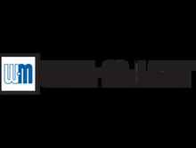 Weil McLain 383-500-658 ULTRA U-IGN CONTROL MODULE