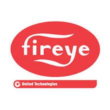 """Fireye 35-200 1"""" WYE (NPT)"""