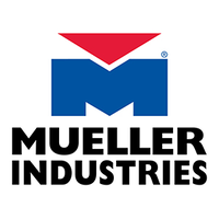 Mueller Industries B34235 7/8 Four-Bolt Check Valve