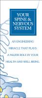 Your Spine & Nervous System