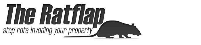 the-ratflap.jpg