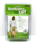 Petmate Bottom's Up Leash - Blue