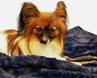 Quality Faux Fur Warm Dog Blanket