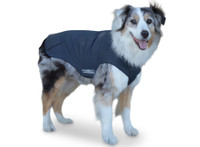 Active Dog Coat Winter Warmth