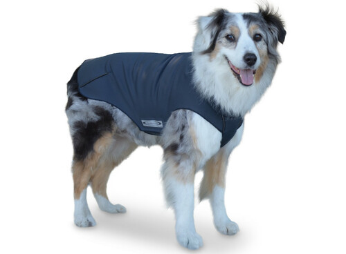 Active Dog Coat Winter Warmth