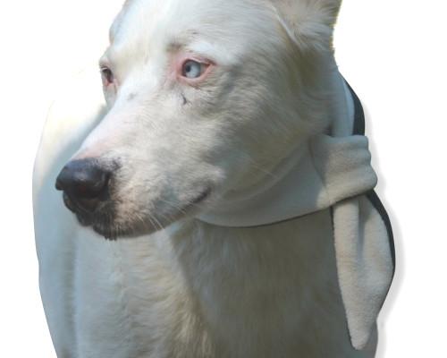 Quality Fleece Dog Scarf Soft Marshmallow