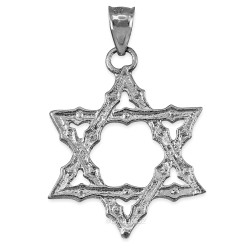 White Gold Star of David Reversible Pendant