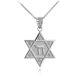 925 Sterling Silver Star of David Chai Necklace