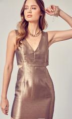 Bronze metallic dress