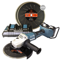 5 in 1 Expert Diamond Blade 12 Pack with Free DGA900 Grinder