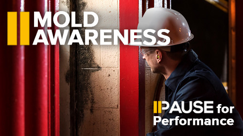 Pause for Performance: Mold Awareness