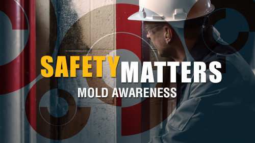 Safety Matters: Mold Awareness