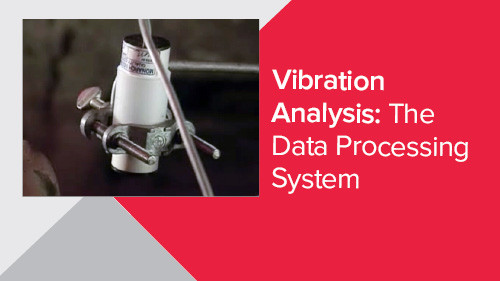 Vibration Analysis: The Data Processing System