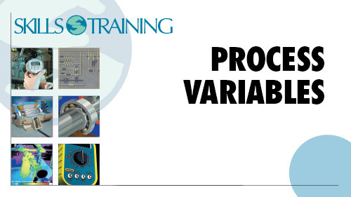 Basic Process Control: Process Variables