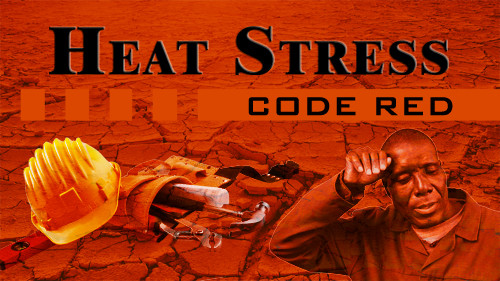 Heat Stress: Code Red