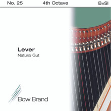 Lever Gut, 4th Octave B