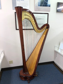 Salvi Aurora Mahogany with Decorations & with added high gloss, 13, years old