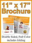"Brochures - 11"" X 17"" 80lb gloss text Double Sided Color - From $52.00"