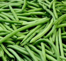 Fresh green beans, string beans