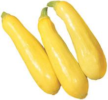 Fresh yellow squash