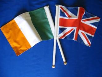 custom-made-hand-held-flags.jpg