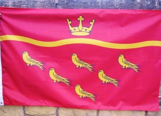 east-sussex-county-flag.jpg