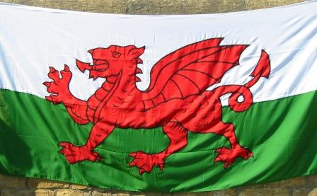 welsh-dragon-5-yard.jpg