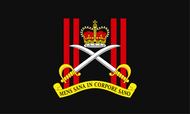 Army Physical Training Corps Camp Flag