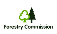 Forestry Commission Flag