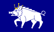 Kingswinford Flag